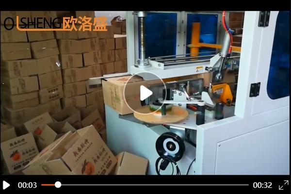 水果行业脐橙包装使用了高速开箱机案例视频